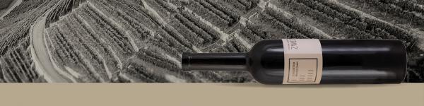 Weinmesse - Consortium Montis Casei  Friends