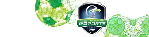 eSports Cup online 2021