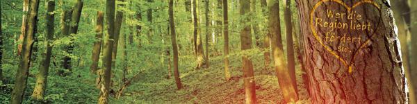 Baumpflanzaktion - Wir schaffen Grünes!